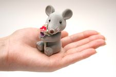 Free Mouse 3 Stock Images - 444494