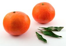 Free Tangerines Stock Images - 445624