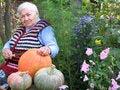 Free Grandma And Pumpkin Stock Photo - 4404290
