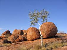 Free Devil S Marbles Royalty Free Stock Photography - 4402267