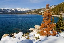 Free Lake In Winter Royalty Free Stock Images - 4404649