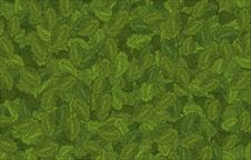Free Green Leaves Background Stock Image - 4405651