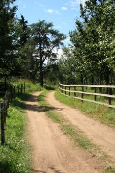 Free Country Driveway Royalty Free Stock Photo - 4407185