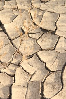 Free Abstract Arid Stock Photography - 4407202