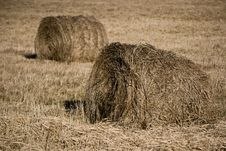 Free Two Hayricks On The Country Royalty Free Stock Photo - 4407655