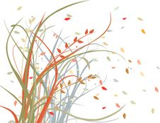 Free Autumn Wind Royalty Free Stock Photos - 44094938