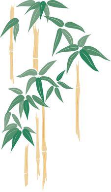Free Bamboo Stock Image - 44096541