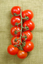Free Red Cherry Tomatoes On The Vine Royalty Free Stock Photos - 4410598