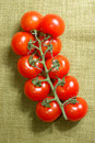 Free Red Cherry Tomatoes On The Vine Royalty Free Stock Image - 4410616