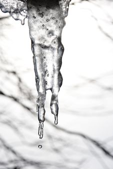 Free Icicles Royalty Free Stock Images - 4411639