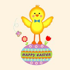 An Easter Chick On The Colorful Egg Stock Photography