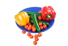 Set Of Vegetables On A Dark Blue Plate Royalty Free Stock Images