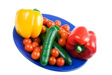 Set Of Vegetables On A Dark Blue Plate Stock Photography