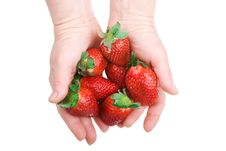 Free Two Hands Hold A Strawberry Royalty Free Stock Photos - 4413728