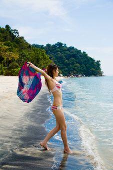 Free Having Fun At The Beach Royalty Free Stock Photos - 4413948