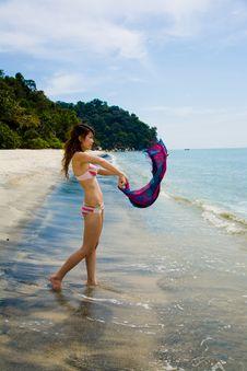 Free Having Fun At The Beach Royalty Free Stock Photography - 4414367