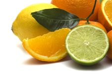 Free Fresh Citrus Assortment Stock Images - 4414994