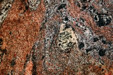 Free Red Granite Stock Photography - 4417302
