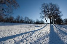 Winter At The Park Royalty Free Stock Images