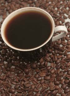 Free The Black Cup With Fragrant Coffee Costs On A Tabl Royalty Free Stock Image - 4419006