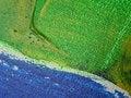 Free Acrilic Paint Stock Image - 4422691