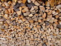 Free Fire Wood Royalty Free Stock Images - 4423779