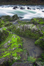 Free Mossy Rock River Stock Images - 4429544