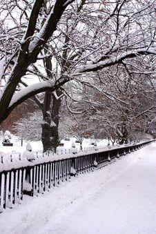 Free Boston Winter Royalty Free Stock Photography - 4423447