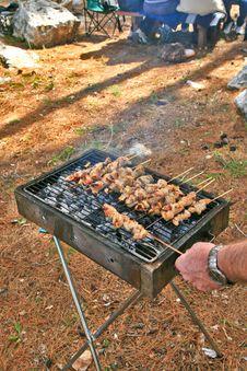 Free The Shish Kebab Is Ready Royalty Free Stock Photos - 4423958