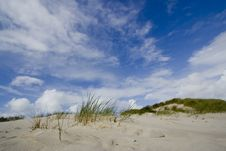 Free Large Dunes Stock Photography - 4425822