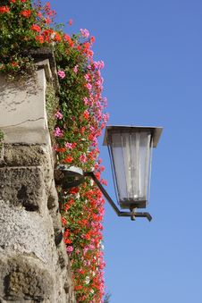 Free Street Lamp In Flowers Royalty Free Stock Photography - 4426217