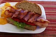 Free Bacon Sandwich Royalty Free Stock Image - 4426456