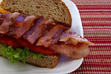 Free Bacon Sandwich Close Up Royalty Free Stock Photos - 4426468