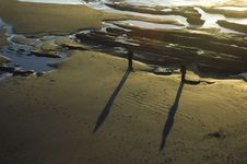 Free Beach Shadow Stock Photography - 4429332