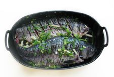 Free Two Fish In A Bowl Royalty Free Stock Photography - 4430387