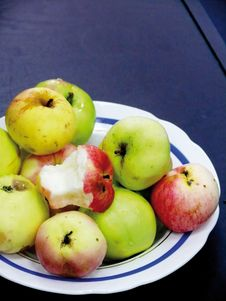 Free Plate With Apples. Royalty Free Stock Images - 4431129