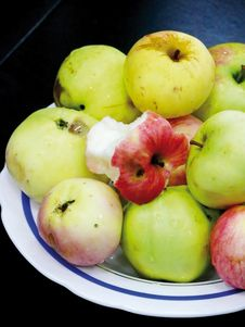 Free Plate With Apples. Royalty Free Stock Photography - 4431157
