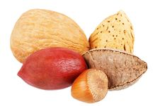 Free Nuts Stock Images - 4431534
