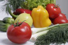 Free Tomato Royalty Free Stock Photo - 4435545