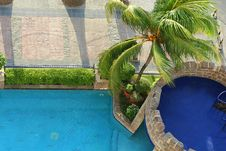 Free Pool With Coconut Tree Royalty Free Stock Image - 4437496