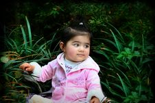 Free Baby In The Grass2 Stock Photography - 4438462