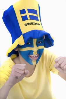 Free Sweden Fan Stock Photo - 4439210