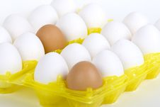 Free Eggs Stock Image - 4439721