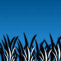 Free Black&White Grass [02] Royalty Free Stock Images - 4441079