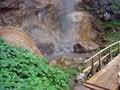 Free Waterfall Bottom Royalty Free Stock Image - 4441546