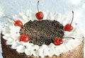 Free Festive Cake Royalty Free Stock Photos - 4441688