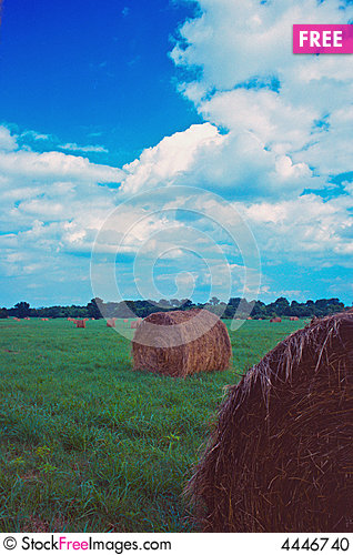 Free Round Bales In Green Meadow Stock Photo - 4446740