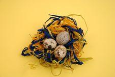 Free Eggs Royalty Free Stock Photos - 4440278