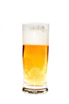 Free Beer Royalty Free Stock Photography - 4440697