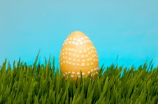 Pastel Easter Egg In Lush Grass Stock Photos
